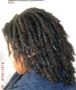 36 start dread w extension dreadlocks meme after the extension is out dreads and before twist styled pmusecretfo Choice Image